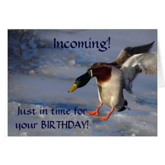 Mallard Duck Birthday Greeting  Card