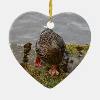 Mallard Duck Christmas Ornament