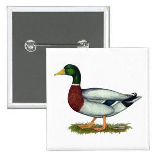 Mallard Duck Drake 15 Cm Square Badge