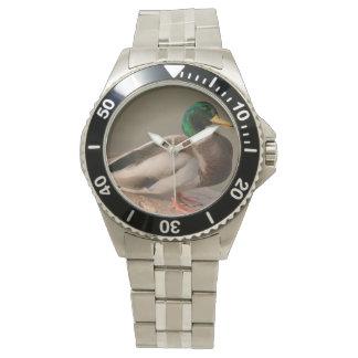 Mallard Duck Drake Stainless Steel Men's Watch
