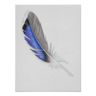 Mallard Duck Feather Watercolor Poster