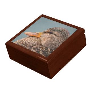 Mallard Duck-Female Large Square Gift Box