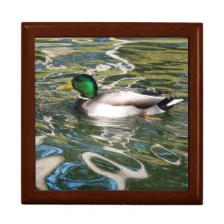 Mallard Duck Trinket Boxes