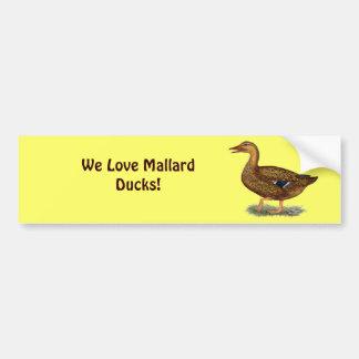 Mallard Duck Hen Car Bumper Sticker