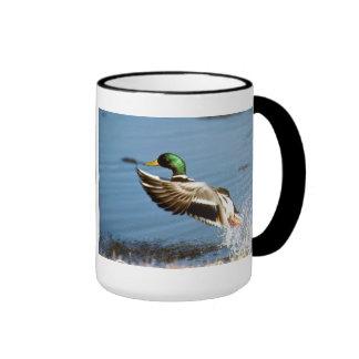 Mallard Duck Mug Ringer Mug
