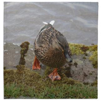 Mallard Duck Napkin