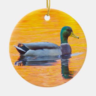 Mallard duck on orange lake, Canada Round Ceramic Decoration