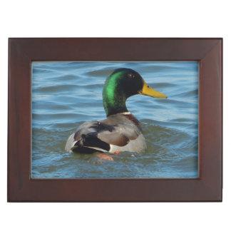 Mallard Duck Keepsake Box