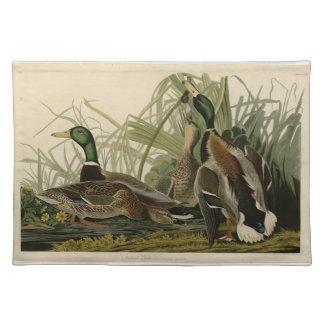 Mallard Duck Placemat