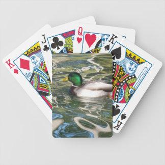 Mallard Duck Playing Cards