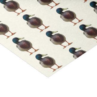 Mallard Duck Tissue Paper