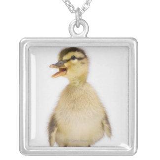 Mallard duckling (Anas platyrhynchos) Personalized Necklace