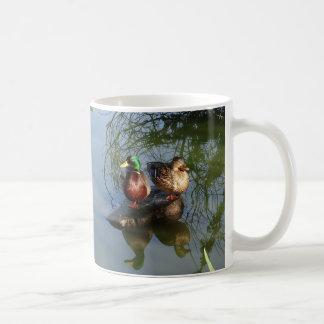 Mallard Ducks #2 Mug