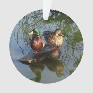 Mallard Ducks #2 Ornament