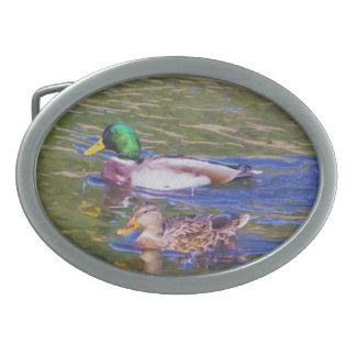 Mallard Ducks Oval Belt Buckle