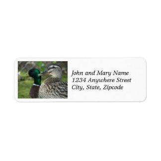 Mallard Ducks Photo Return Address Labels