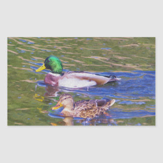 Mallard Ducks Rectangular Sticker