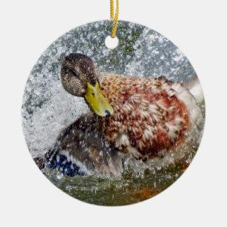 Mallard Hen Duck Splish Splash Taking A Bath Christmas Ornament