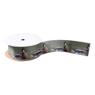 Mallard Satin Ribbon