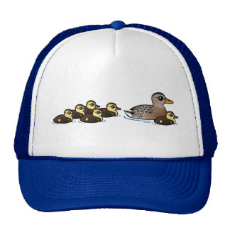 Mallard & six ducklings cap