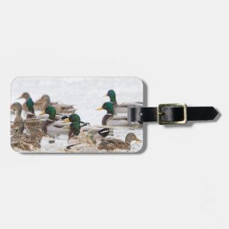 Mallards in wetland in winter bag tag
