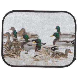 Mallards in wetland in winter car mat
