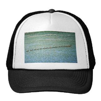 Mallards on Wetlands Trucker Hat