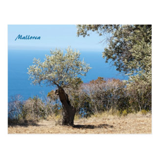 Mallorca Post Cards