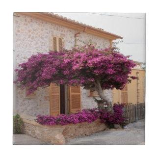 Mallorca tree nature design small square tile