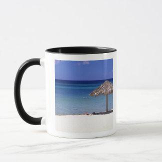 Malmok Beach, Aruba, Netherlands Antilles Mug