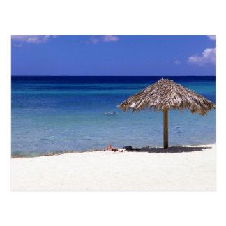 Malmok Beach, Aruba, Netherlands Antilles Postcard
