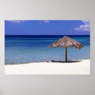 Malmok Beach, Aruba, Netherlands Antilles Poster