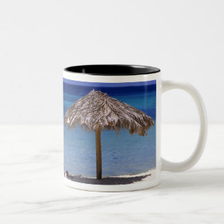 Malmok Beach, Aruba, Netherlands Antilles Two-Tone Coffee Mug