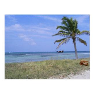 Malmok Beach in Aruba Postcard