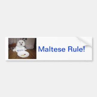 Maltese At Dinner Bumper Sticker