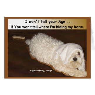 Maltese Birthday Humor Card for Over the Hill