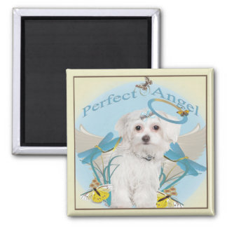Maltese Butterfly Catcher Gifts Square Magnet