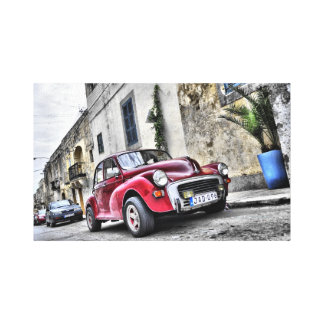 Maltese car canvas print