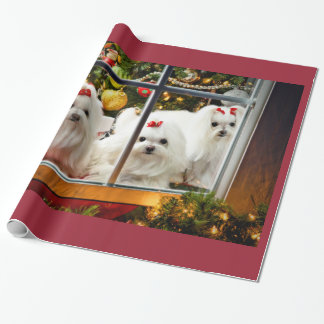 Maltese Christmas wrapping paper