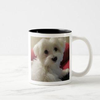 Maltese Mug - Easy to Personalize!
