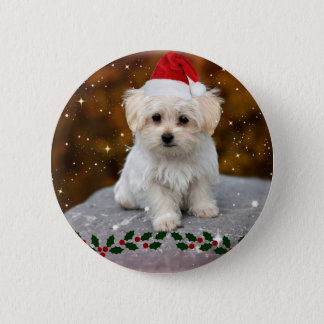Maltese Puppy Christmas 6 Cm Round Badge