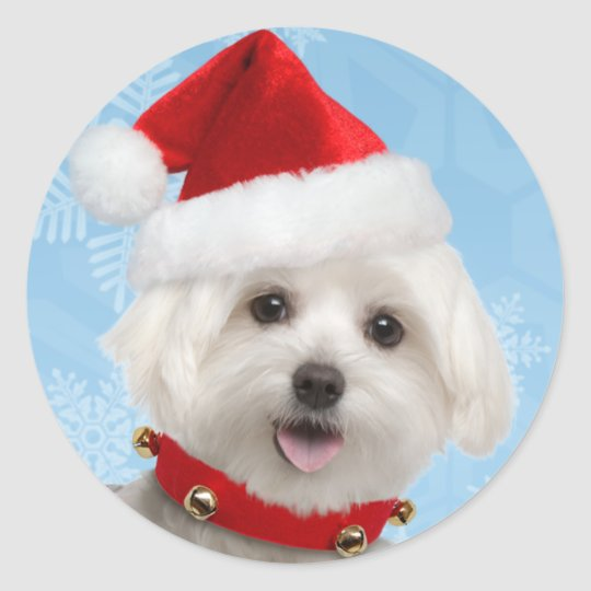 Maltese Puppy Christmas Stickers