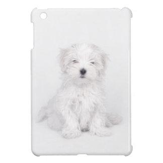 Maltese puppy iPad mini cases