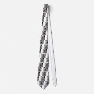 Maltese Puppy Necktie