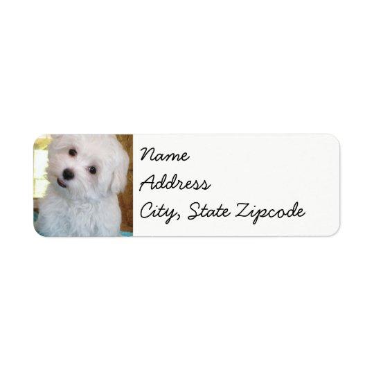 maltese Puppy sticker labels