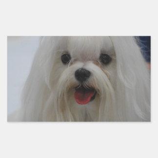 Maltese Puppy Stickers