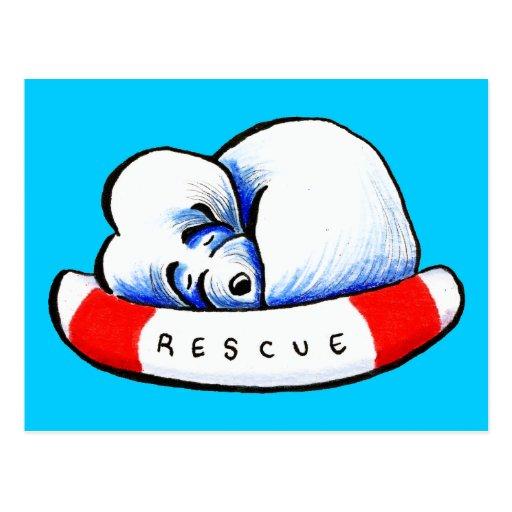 Maltese Rescue Postcard