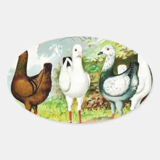 Malteser Pigeons 2 Oval Stickers