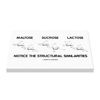 Maltose Sucrose Lactose Structural Similarities Gallery Wrapped Canvas