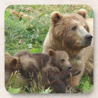Mama Bear Grizzly Coaster Set